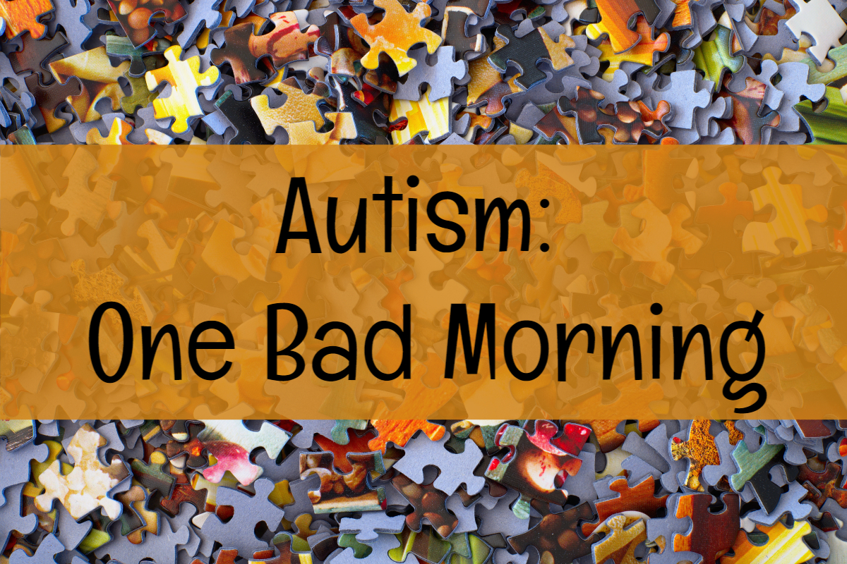 Autism:  One Bad Morning