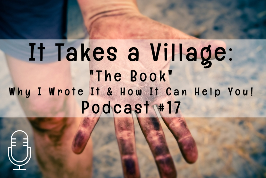 It Takes a Village the Book