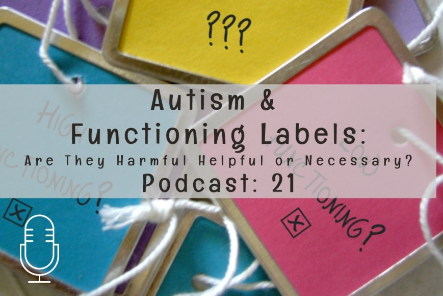 Autism and Functioning Labels